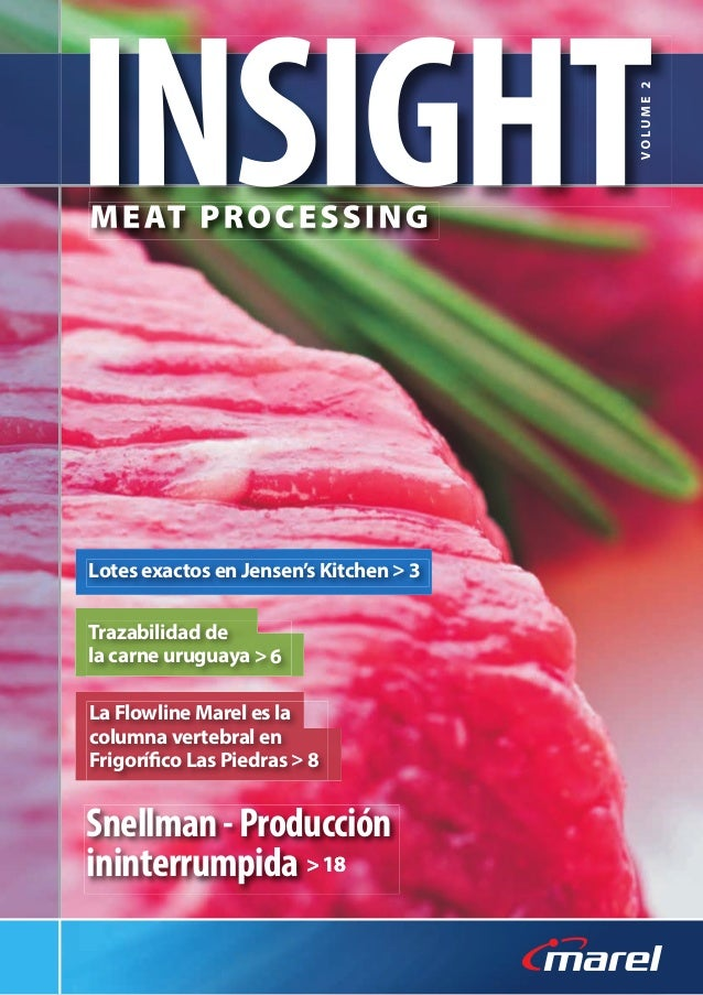 Insight meat processing_es_final