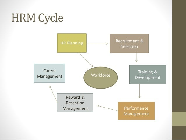 training process in hrm pdf