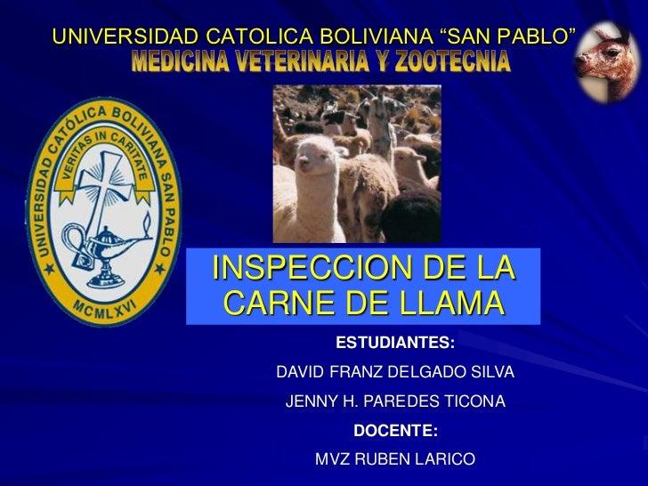 """UNIVERSIDAD CATOLICA BOLIVIANA """"SAN PABLO""""<br />INSPECCION DE LA CARNE DE LLAMA<br />ESTUDIANTES: <br />DAVID FRANZ DELGAD..."""