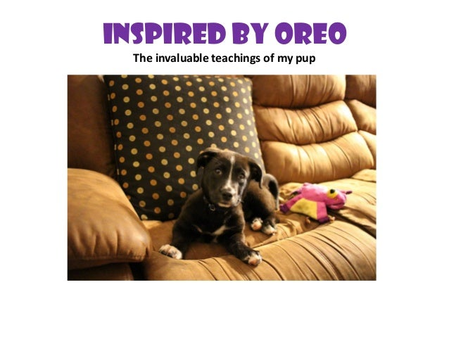 Inspired By Oreo The invaluable teachings of my pup