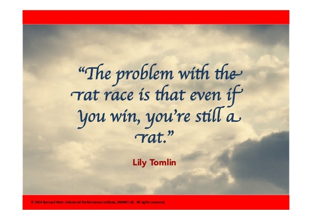 the problem with the rat