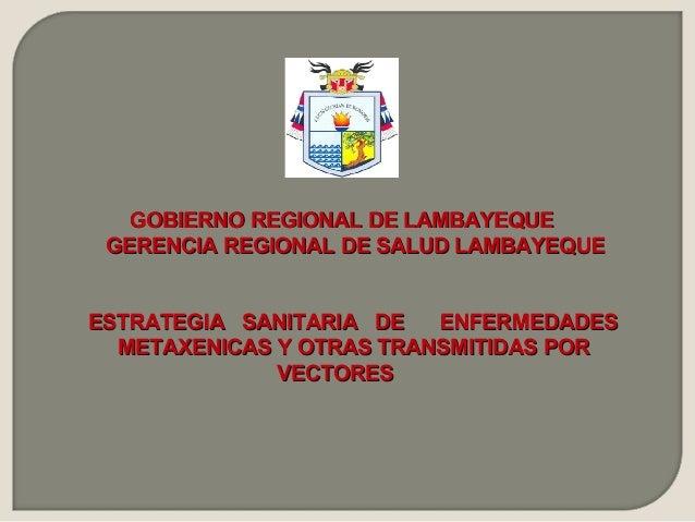 GOBIERNO REGIONAL DE LAMBAYEQUE GERENCIA REGIONAL DE SALUD LAMBAYEQUEESTRATEGIA SANITARIA DE   ENFERMEDADES  METAXENICAS Y...