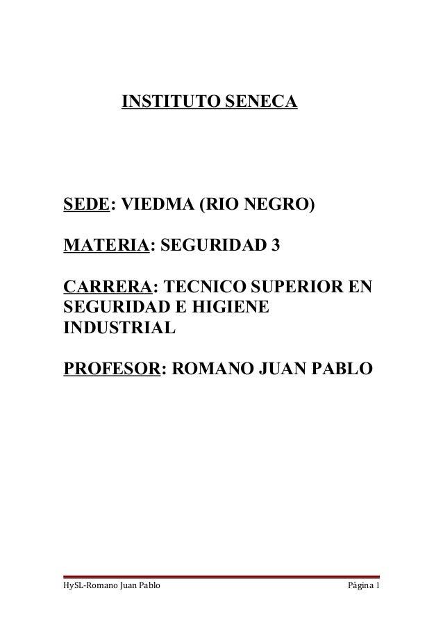 INSTITUTO SENECA SEDE: VIEDMA (RIO NEGRO) MATERIA: SEGURIDAD 3 CARRERA: TECNICO SUPERIOR EN SEGURIDAD E HIGIENE INDUSTRIAL...