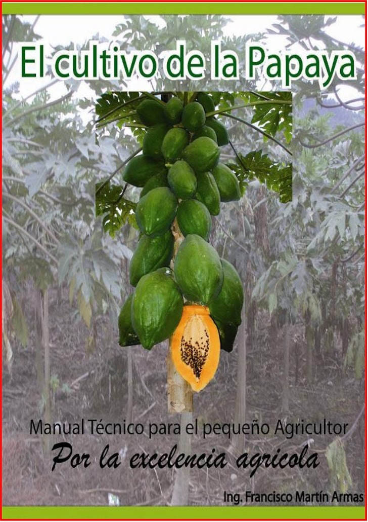 Instructivo tecnico para el agricultor de la papaya