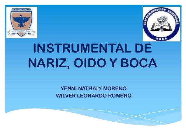 INSTRUMENTAL DENARIZ, OIDO Y BOCAYENNI NATHALY MORENOWILVER LEONARDO ROMERO