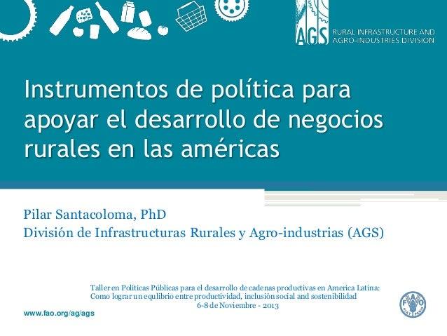 Instrumentos de política para apoyar el desarrollo de negocios rurales en las américas Pilar Santacoloma, PhD División de ...