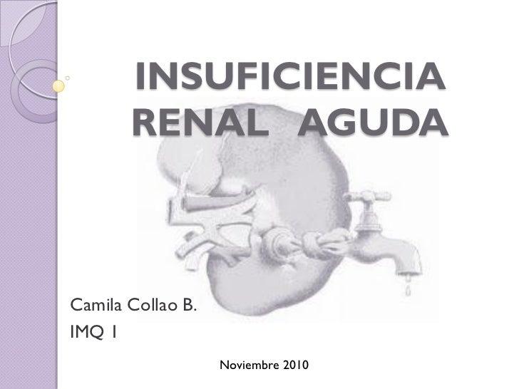 INSUFICIENCIA       RENAL AGUDACamila Collao B.IMQ 1                   Noviembre 2010