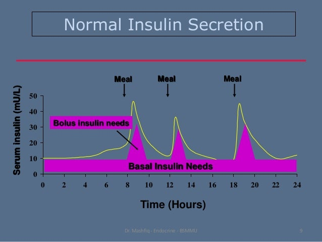 how to start insulin basal bolus