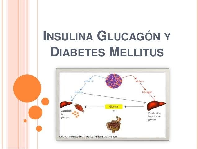 Insulina glucagón y diabetes mellitus