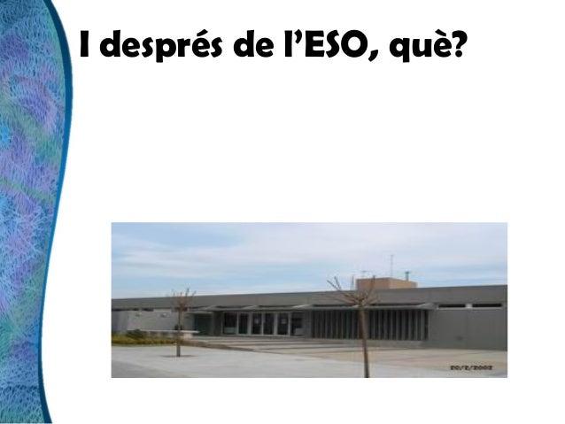 INS Valerià Pujol i Bosch  - Batxillerat
