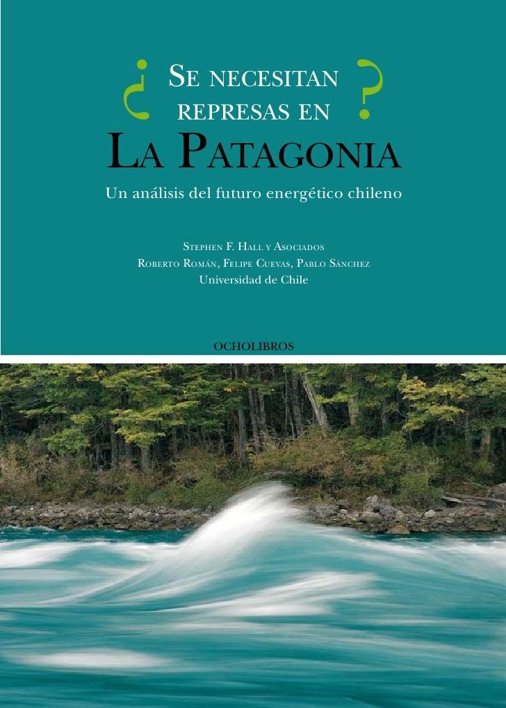¿       Se neceSitan            repreSaS en                     ? La patagonia Un análisis del futuro energético chileno  ...