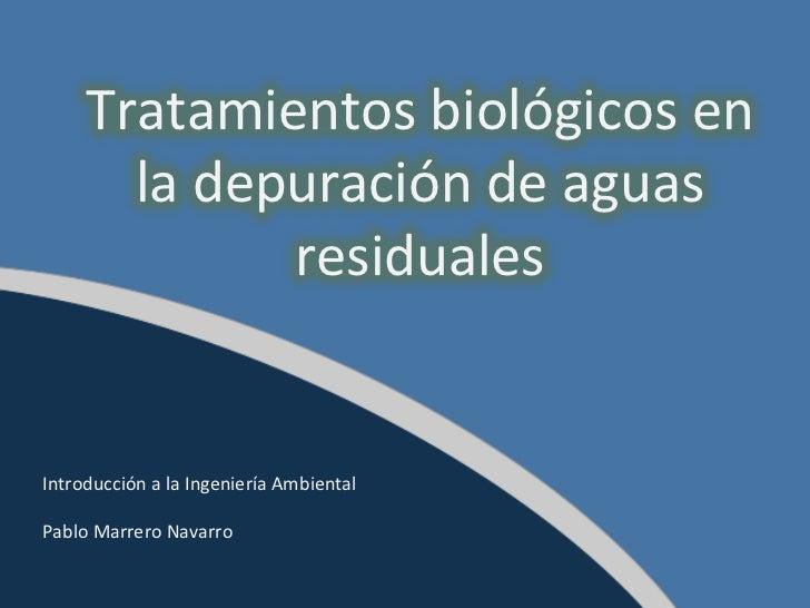Tratamientos biológicos en la depuración de aguas residuales