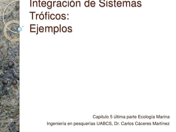 Integración de Sistemas Tróficos:Ejemplos<br />Capitulo 5 última parte Ecología Marina <br />Ingeniería en pesquerías UABC...
