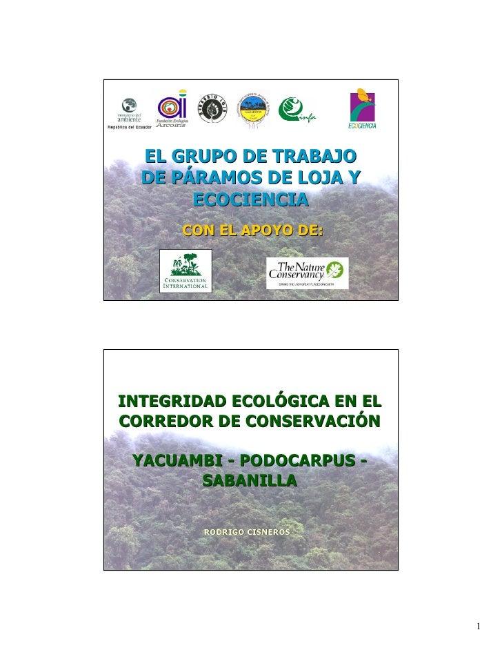 EL GRUPO DE TRABAJO   DE PÁRAMOS DE LOJA Y        ECOCIENCIA       CON EL APOYO DE:     INTEGRIDAD ECOLÓGICA EN EL CORREDO...