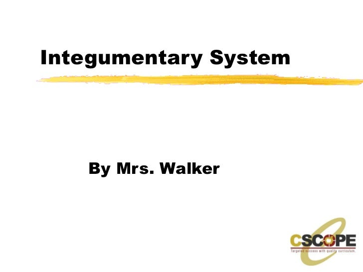 Integumentary System By Mrs. Walker