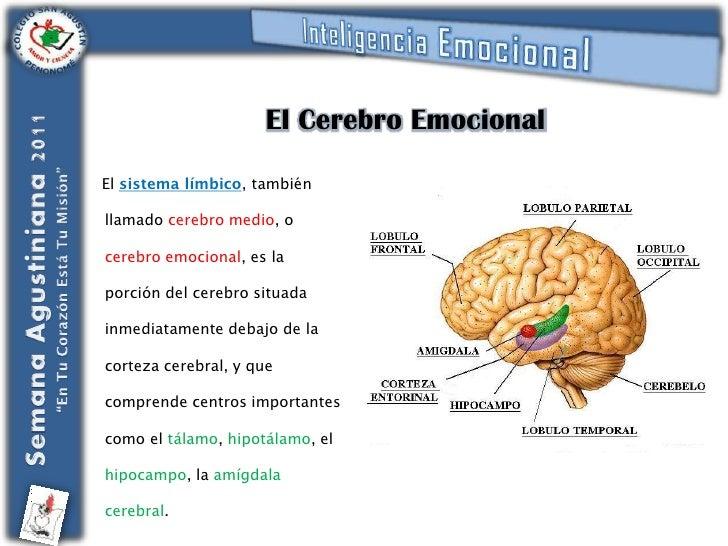 goleman emotional intelligence test pdf