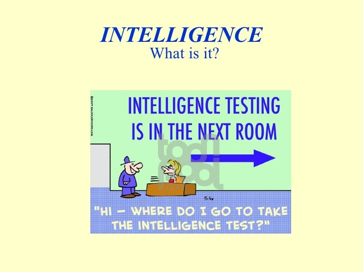 INTELLIGENCE What is it?