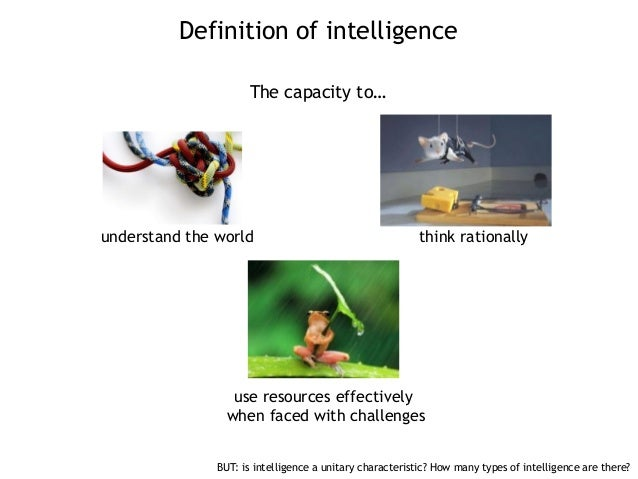 meanings of intelligence and adapative behavior Is there a scientific alternative to neo-darwinism for  do not always carry the same meanings and  is there a scientific alternative to neo-darwinism.