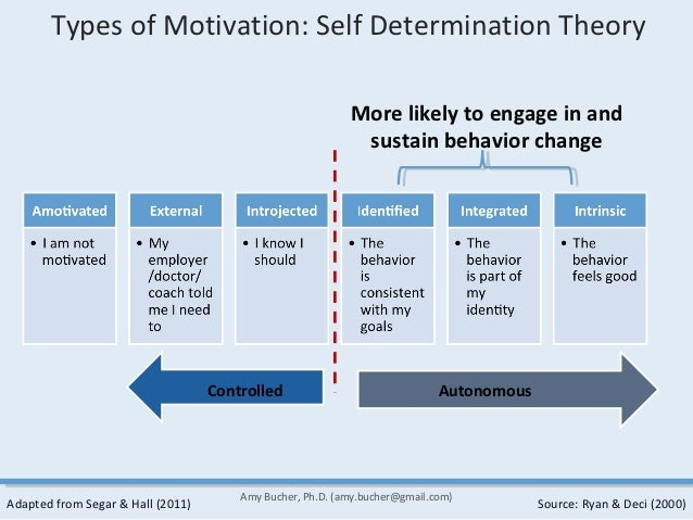 Self determination theory intrinsic extrinsic motivation