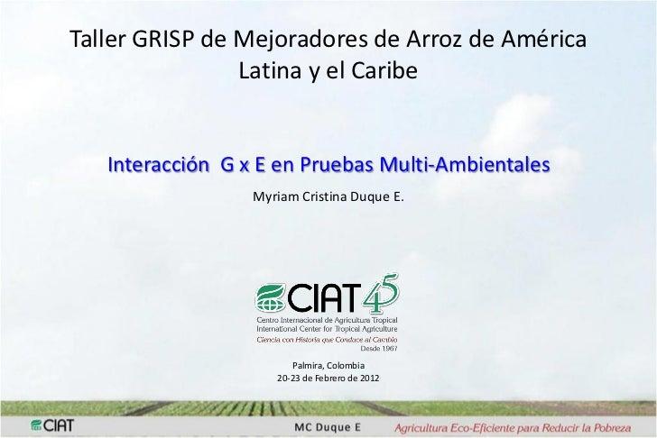 Taller GRISP de Mejoradores de Arroz de América                Latina y el Caribe   Interacción G x E en Pruebas Multi-Amb...