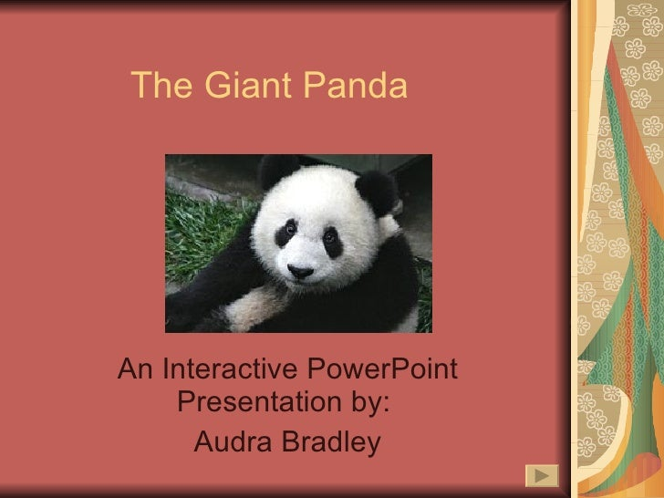 The Giant Panda An Interactive PowerPoint Presentation by:  Audra Bradley