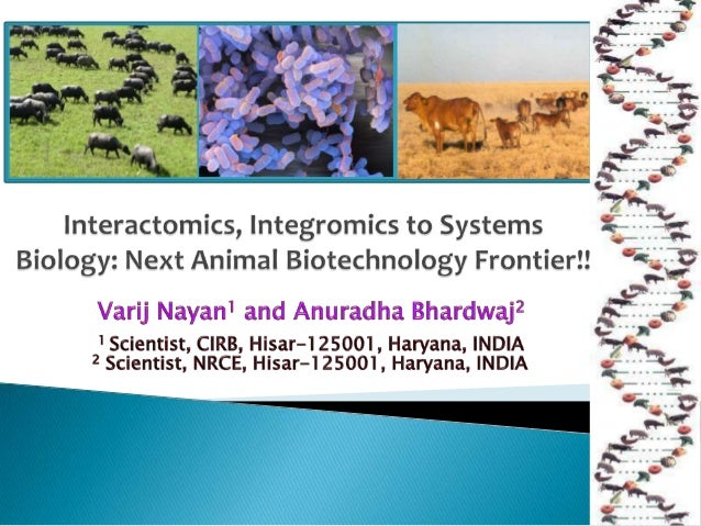 Interactomics, Integromics to Systems Biology: Next Animal Biotechnology Frontier