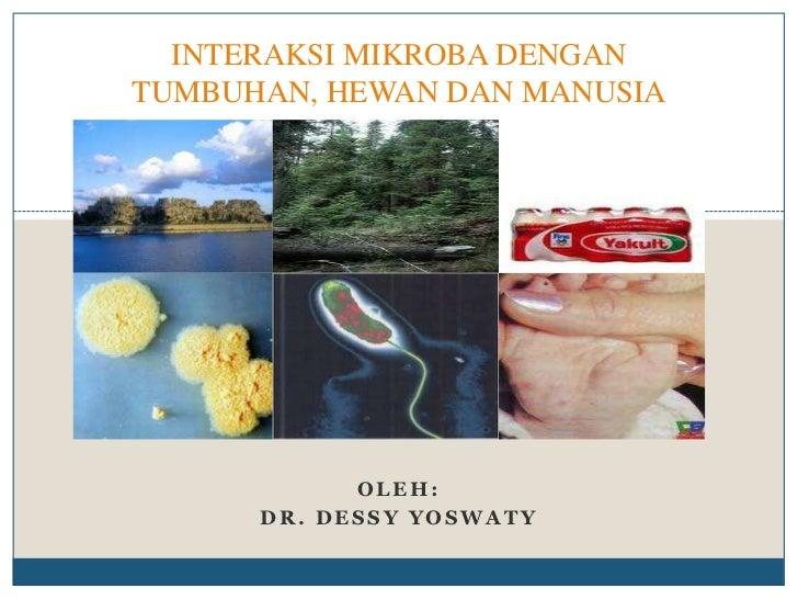 Interaksi mikroba 2011
