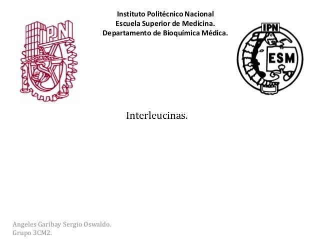Interleucinas.Angeles Garibay Sergio Oswaldo.Grupo 3CM2.Instituto Politécnico NacionalEscuela Superior de Medicina.Departa...