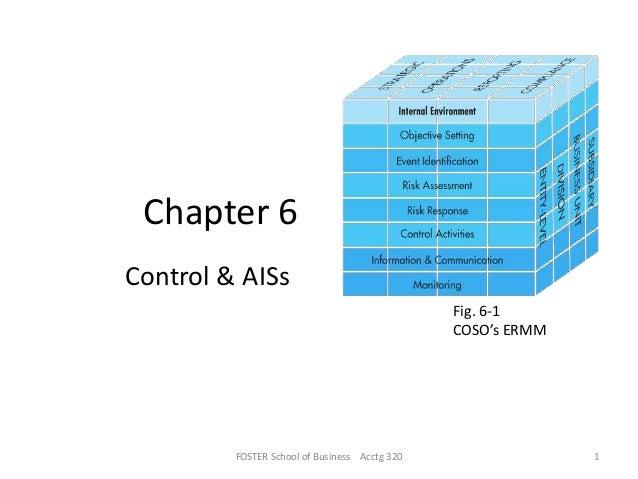 Internal controls & ai ss