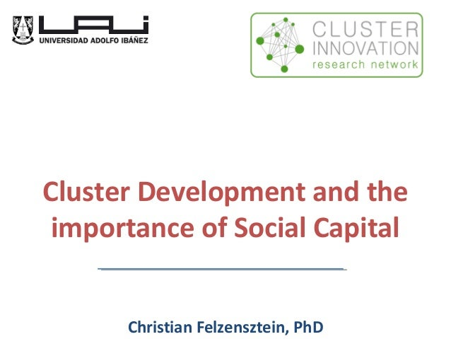 Cluster Development and the importance of Social Capital Christian Felzensztein, PhD