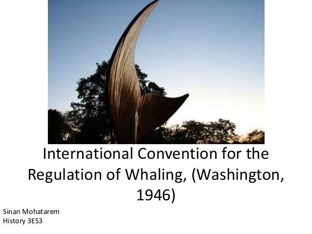 International Convention for the Regulation of Whaling, (Washington, 1946) Sinan Mohatarem History 3ES3