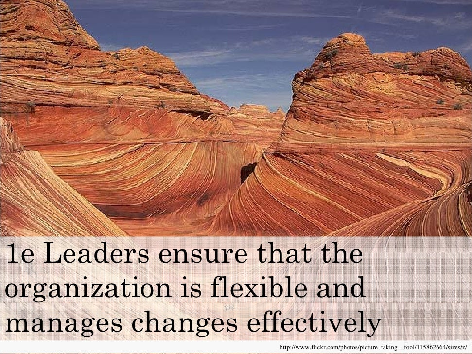 1e Leaders ensure that the organization is flexible and manages changes effectively