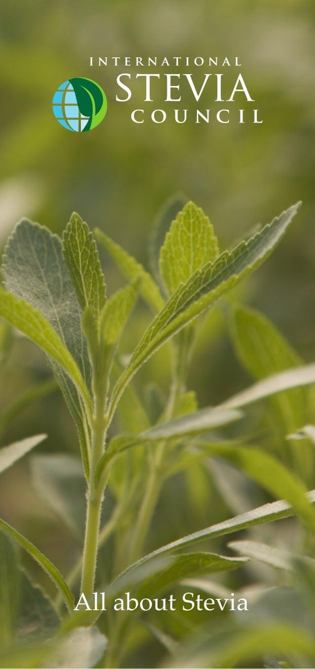 International stevia council brochure