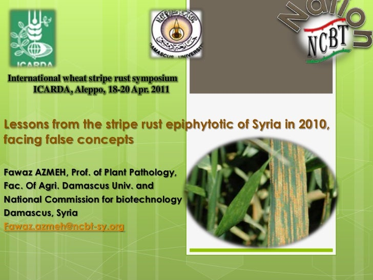 Lessons from the stripe rust epiphytotic of Syria in 2010,facing false concepts