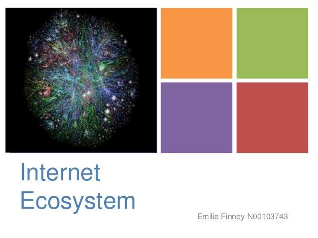 +  Internet Ecosystem  Emilie Finney N00103743