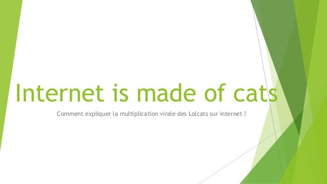 Internet is made of cats Comment expliquer la multiplication virale des Lolcats sur internet ?
