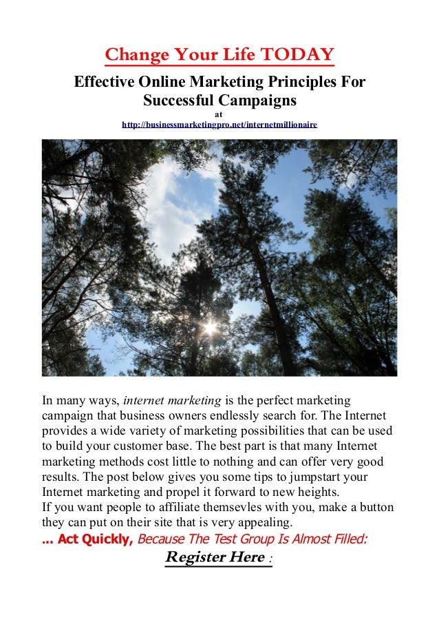 Change Your Life TODAY Effective Online Marketing Principles For Successful Campaigns at http://businessmarketingpro.net/i...