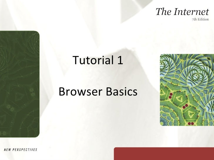 Tutorial 1 Browser Basics