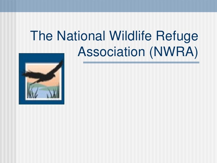 Internship   National Wildlife Refuge Association