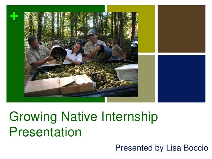 Growing Native Internship Presentation<br />Presented by Lisa Boccio<br />