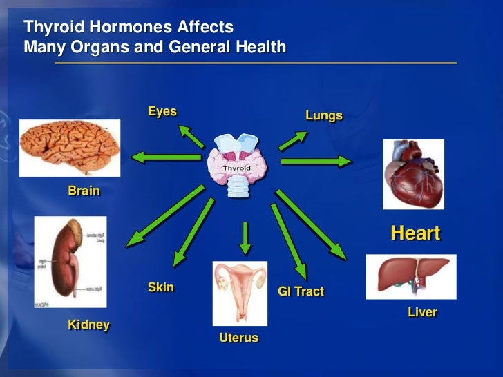 what type of hormone is testosterone