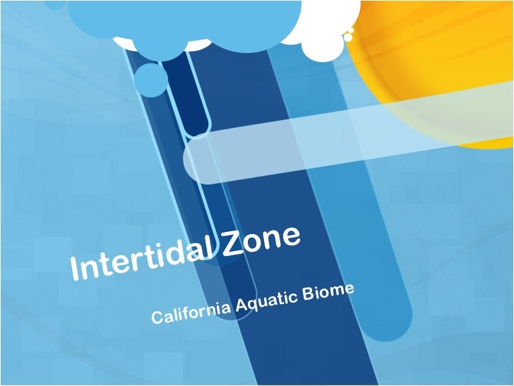 Intertidal powerpoint (compatibility copy)