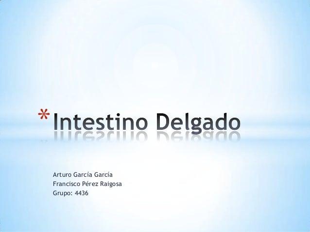 Arturo García García Francisco Pérez Raigosa Grupo: 4436 *