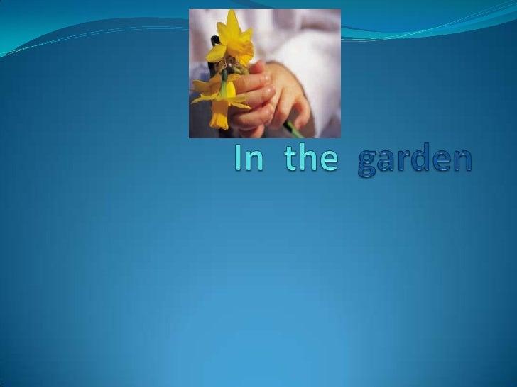 In The Garden   Reuben