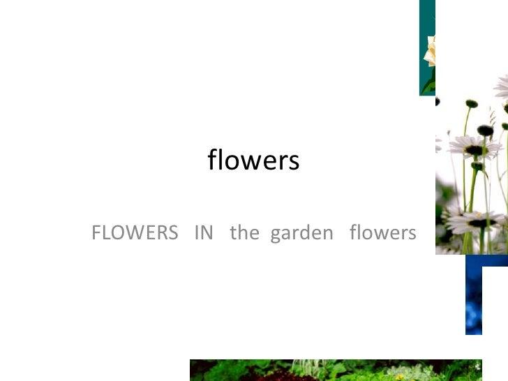 flowers<br />FLOWERS   IN   the  garden   flowers <br />