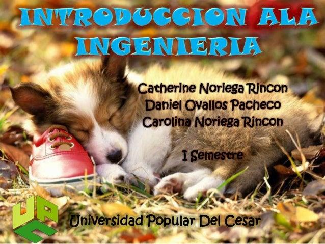 Catherine Noriega Rincon           Daniel Ovallos Pacheco          Carolina Noriega Rincon                 I SemestreUnive...
