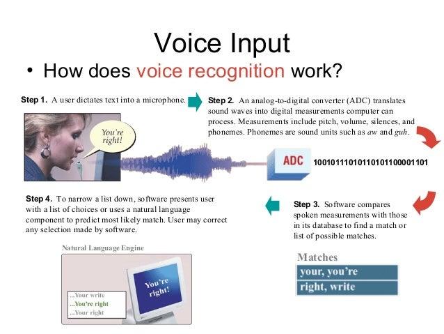 voice-input-pizdi-dal