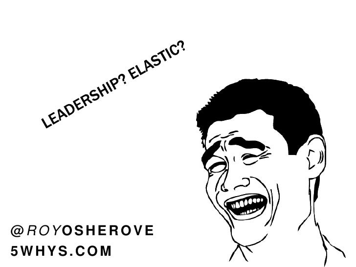 Introduction to Elastic Leadership