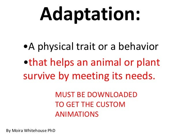 Adaptation: MUST BE DOWNLOADED TO GET THE CUSTOM ANIMATIONS By Moira Whitehouse PhD •A physical trait or a behavior •that ...
