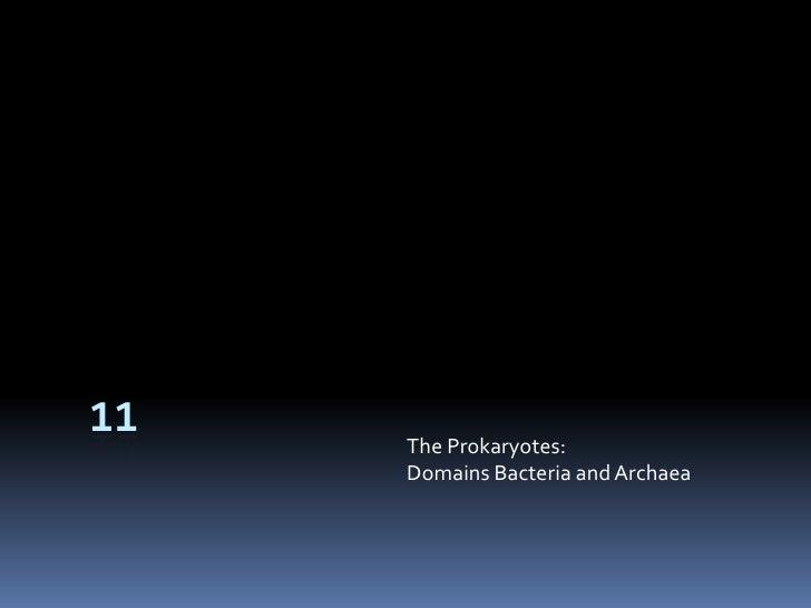 11<br />The Prokaryotes:Domains Bacteria and Archaea<br />